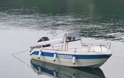 Speedboat tour in Komani Lake